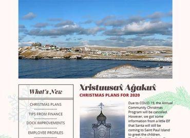 BeringS Newsletter December 2020